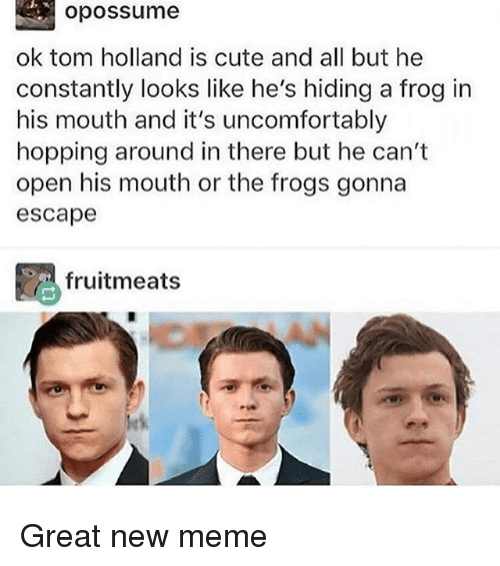 Cute, Meme, and Memes: opossume  ok tom holland is cute and all but he  constantly looks like he's hiding a frog in  his mouth and it's uncomfortably  hopping around in there but he can't  open his mouth or the frogs gonna  escape  略fruitmeats Great new meme
