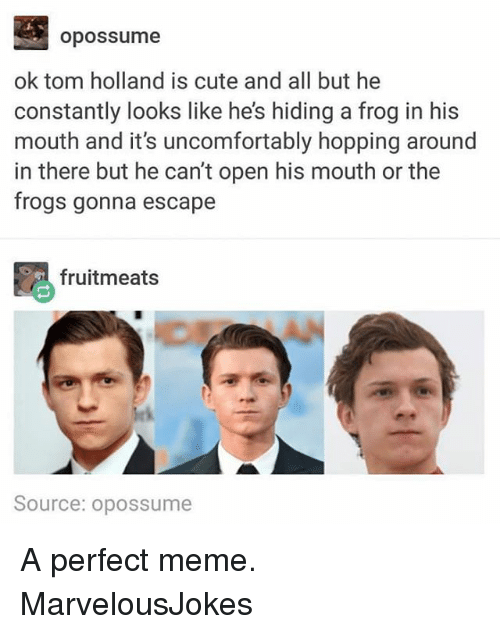 tom hollander: opossume  ok tom holland is cute and all but he  constantly looks like he's hiding a frog in his  mouth and it's uncomfortably hopping around  in there but he can't open his mouth or the  frogs gonna escape  毘fruitmeats  Source: opossume A perfect meme. MarvelousJokes