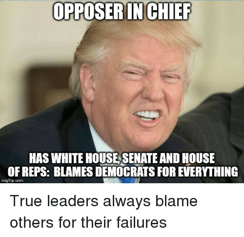 True, White House, and House: OPPOSER IN CHIEF  HAS WHITE HOUSE SENATE AND HOUSE  OF REPS: BLAMES DEMOCRATS FOR EVERYTHING  imgflip.com