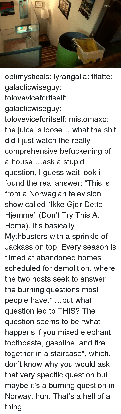 """Television: optimysticals:  lyrangalia:  tflatte:  galacticwiseguy:  toloveviceforitself:  galacticwiseguy:  toloveviceforitself:  mistomaxo:  the juice is loose  …what the shit did I just watch  the really comprehensive befuckening of a house  …ask a stupid question, I guess  wait look i found the real answer: """"This is from a Norwegian television show called """"Ikke Gjør Dette Hjemme"""" (Don't Try This At Home). It's basically Mythbusters with a sprinkle of Jackass on top. Every season is filmed at abandoned homes scheduled for demolition, where the two hosts seek to answer the burning questions most people have.""""  …but what question led to THIS?  The question seems to be""""what happens if you mixed elephant toothpaste, gasoline, and fire together in a staircase"""", which, I don't know whyyou would ask that very specific question but maybe it's a burning question in Norway.  huh. That's a hell of a thing."""