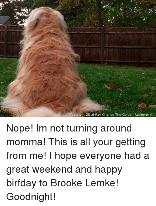 Birfday: opyright 2016 Ray Charles The Golden Retriever Nope! Im not turning around momma! This is all your getting from me! I hope everyone had a great weekend and happy birfday to Brooke Lemke! Goodnight!
