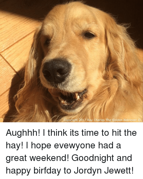 Birfday: opyright 2017 Ray Charles The Golden Retriever Aughhh! I think its time to hit the hay! I hope evewyone had a great weekend! Goodnight and happy birfday to Jordyn Jewett!