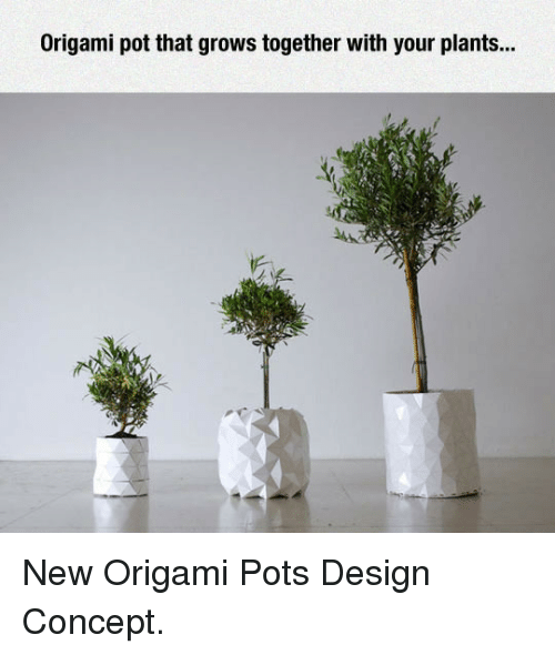 pot: Origami pot that grows together with your plants... <p>New Origami Pots Design Concept.</p>