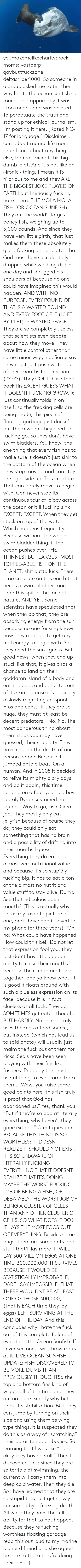 "surviving: ORihad Herrma M  S youmakemelikecharity:  rock-moms:  vastderp:  gaybuttfuckzone:  deltasniper1000:  So someone in a group asked me to tell them why I hate the ocean sunfish so much, and apparently it was ~too mean~ and was deleted. To perpetuate the truth and stand up for ethical journalism, I'm posting it here. [Rated NC-17 for language.]  Disclaimer, I care about marine life more than I care about anything else, for real. Except this big dumb idiot. And it's not like an ~ironic~ thing, I mean it IS hilarious to me and they ARE THE BIGGEST JOKE PLAYED ON EARTH but I seriously fucking hate them.  THE MOLA MOLA FISH (OR OCEAN SUNFISH)  They are the world's largest boney fish, weighing up to 5,000 pounds. And since they have very little girth, that just makes them these absolutely giant fucking dinner plates that God must have accidentally dropped while washing dishes one day and shrugged his shoulders at because no one could have imagined this would happen. AND WITH NO PURPOSE. EVERY POUND OF THAT IS A WASTED POUND AND EVERY FOOT OF IT (10 FT BY 14 FT) IS WASTED SPACE.  They are so completely useless that scientists even debate about how they move. They have little control other than some minor wiggling. Some say they must just push water out of their mouths for direction (?????). They COULD use their back fin EXCEPT GUESS WHAT IT DOESNT FUCKING GROW. It just continually folds in on itself, so the freaking cells are being made, this piece of floating garbage just doesn't put them where they need to fucking go.   So they don't have swim bladders. You know, the one thing that every fish has to make sure it doesn't just sink to the bottom of the ocean when they stop moving and can stay the right side up. This creature. That can barely move to begin with. Can never stop its continuous tour of idiocy across the ocean or it'll fucking sink. EXCEPT. EXCEPT. When they get stuck on top of the water! Which happens frequently! Because without the whole swim bladder thing, if the ocean pushes over THE THINNEST BUT LARGEST MOST TOPPLE-ABLE FISH ON THE PLANET, shit outta luck! There is no creature on this earth that needs a swim bladder more than this spit in the face of nature, AND YET. Some scientists have speculated that when they do that, they are absorbing energy from the sun because no one fucking knows how they manage to get any real energy to begin with. So they need the sun I guess. But good news, when they end up stuck like that, it gives birds a chance to land on their goddamn island of a body and eat the bugs and parasites out of its skin because it's basically a slowly migrating cesspool. Pros and cons.   ""If they are so huge, they must at least be decent predators."" No. No. The most dangerous thing about them is, as you may have guessed, their stupidity. They have caused the death of one person before. Because it jumped onto a boat. On a human. And in 2005 it decided to relive its mighty glory days and do it again, this time landing on a four-year-old boy. Luckily Byron sustained no injuries. Way to go, fish. Great job.  They mostly only eat jellyfish because of course they do, they could only eat something that has no brain and a possibility of drifting into their mouths I guess. Everything they do eat has almost zero nutritional value and because it's so stupidly fucking big, it has to eat a ton of the almost no nutritional value stuff to stay alive. Dumb. See that ridiculous open mouth? (This is actually why this is my favorite picture of one, and I have had it saved to my phone for three years) ""Oh no! What could have happened! How could this be!"" Do not let that expression fool you, they just don't have the goddamn ability to close their mouths because their teeth are fused together, and ya know what, it is good it floats around with such a clueless expression on its face, because it is in fact clueless as all fuck.  They do SOMETIMES get eaten though. BUT HARDLY. No animal truly uses them as a food source, but instead (which has lead us to said photo) will usually just maim the fuck out of them for kicks. Seals have been seen playing with their fins like frisbees. Probably the most useful thing to ever come from them.   ""Wow, you raise some good points here, this fish truly is proof that God has abandoned us."" Yes, thank you. ""But if they're so bad at literally everything, why haven't they gone extinct."" Great question.   BECAUSE THIS THING IS SO WORTHLESS IT DOESNT REALIZE IT SHOULD NOT EXIST. IT IS SO UNAWARE OF LITERALLY FUCKING EVERYTHING THAT IT DOESNT REALIZE THAT IT'S DOING MAYBE THE WORST FUCKING JOB OF BEING A FISH, OR DEBATABLY THE WORST JOB OF BEING A CLUSTER OF CELLS THAN ANY OTHER CLUSTER OF CELLS. SO WHAT DOES IT DO? IT LAYS THE MOST EGGS OUT OF EVERYTHING. Besides some bugs, there are some ants and stuff that'll lay more. IT WILL LAY 300 MILLION EGGS AT ONE TIME. 300,000,000. IT SURVIVES BECAUSE IT WOULD BE STATISTICALLY IMPROBABLE, DARE I SAY IMPOSSIBLE, THAT THERE WOULDNT BE AT LEAST ONE OF THOSE 300,000,000 (that is EACH time they lay eggs) LEFT SURVIVING AT THE END OF THE DAY.   And this concludes why I hate the fuck out of this complete failure of evolution, the Ocean Sunfish. If I ever see one, I will throw rocks at it.   LIVE OCEAN SUNFISH UPDATE: FISH DISCOVERED TO BE MORE DUMB THAN PREVIOUSLY THOUGHTSo  the top and bottom fins kind of wiggle all of the time and they are not  sure exactly why but think it's stabilization. BUT they can jump by  turning on their side and using them as  wing type things. It is suspected they do this as a way of ""scratching""  their parasite ridden bodies. So learning that I was like ""huh okay they  have a skill."" Then I discovered this: Since they  are so terrible at swimming, the current will carry them into deep cold  water. Then they die. So I have learned that they are so stupid they  just get slowly consumed by a freezing death. All while they have the  full ability for that to not happen. Because they're fucking worthless  floating garbage    i read this out loud to my marine bio nerd friend and she agrees   be nice to them they're doing their best :("