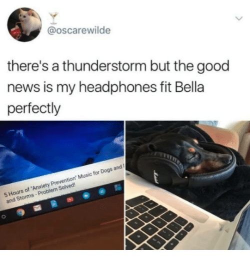 "Dogs, Music, and News: @oscarewilde  there's a thunderstorm but the good  news is my headphones fit Bella  perfectly  5 Hours of Anxiety Prevention"" Music for Dogs and  Hourns-P  and Storms- Problem Solved"