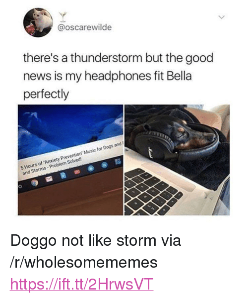 "Dogs, Music, and News: @oscarewilde  there's a thunderstorm but the good  news is my headphones fit Bella  perfectly  5 Hours of Anxiety Prevention Music for Dogs and  and Storms-Problem Solved <p>Doggo not like storm via /r/wholesomememes <a href=""https://ift.tt/2HrwsVT"">https://ift.tt/2HrwsVT</a></p>"