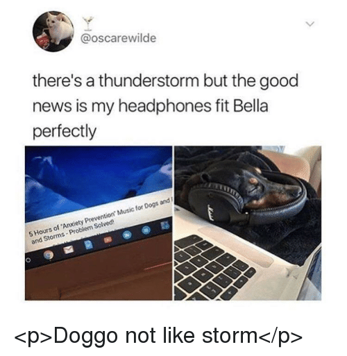Dogs, Music, and News: @oscarewilde  there's a thunderstorm but the good  news is my headphones fit Bella  perfectly  5 Hours of Anxiety Prevention Music for Dogs and  and Storms-Problem Solved <p>Doggo not like storm</p>