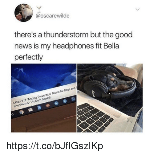 Dogs, Memes, and Music: @oscarewilde  there's a thunderstorm but the good  news is my headphones fit Bella  perfectly  5 Hours of Anxiety Prevention Music for Dogs and  5HGom  and Storms- Problem Solved https://t.co/bJfIGszIKp