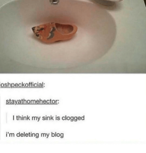 Ironic, Blogs, and Blogging: oshpeckofficial:  ector:  I think my sink is clogged  i'm deleting my blog