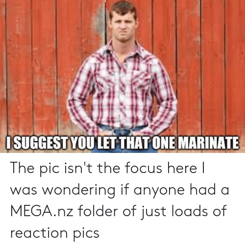 marinate: OSUGGEST YOU LET THAT ONE MARINATE The pic isn't the focus here I was wondering if anyone had a MEGA.nz folder of just loads of reaction pics