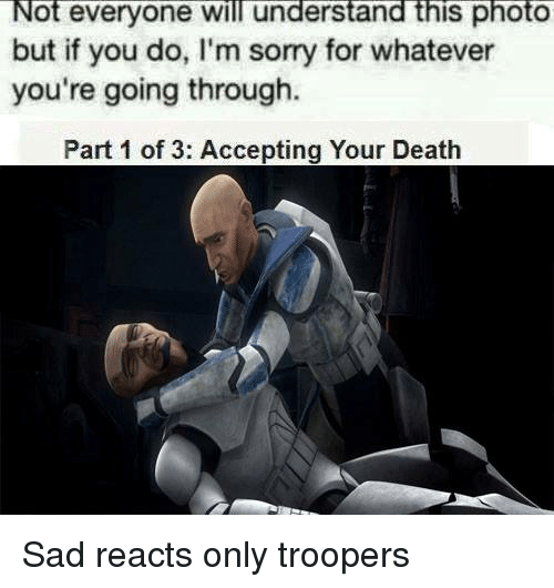 Memes, Sorry, and Death: ot everyone will understand this photo  but if you do, l'm sorry for whatever  you're going through.  Part 1 of 3: Accepting Your Death Sad reacts only troopers