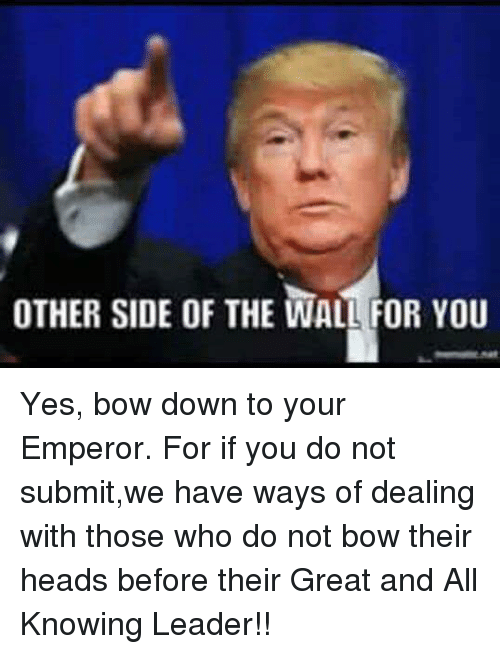 Other Side Of The Wall For You: OTHER SIDE OF THE WALL FOR YOU Yes, bow down to your Emperor. For if you do not submit,we have ways of dealing with those who do not bow their heads before their Great and All Knowing Leader!!