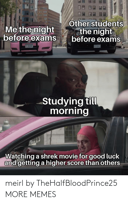 score: Other students  the night  before exams  Me the night  before exams  G152  S83-5H17  Studying till  morning  Watching a shrek movie for good luck  and getting a higher score than others  Plass meirl by TheHalfBloodPrince25 MORE MEMES