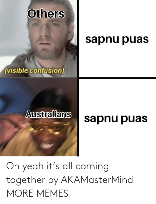 confusion: Others  sapnu puas  [visible confusion]  Australians  sapnu puas Oh yeah it's all coming together by AKAMasterMind MORE MEMES