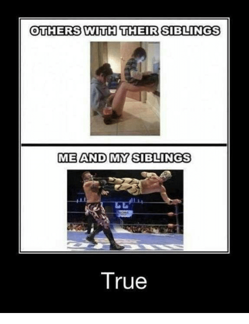 Funny: OTHERS WITH THEIR SIBLINGS  ME AND MY SIBLINGS  True