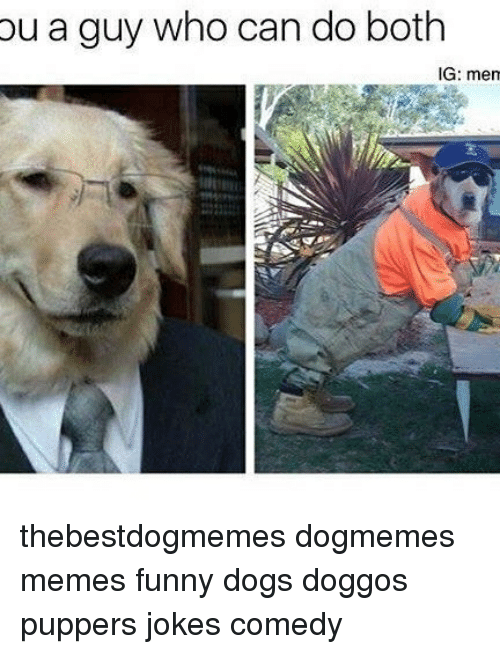 Dogs, Funny, and Memes: ou a guy who can do both  IG: men thebestdogmemes dogmemes memes funny dogs doggos puppers jokes comedy