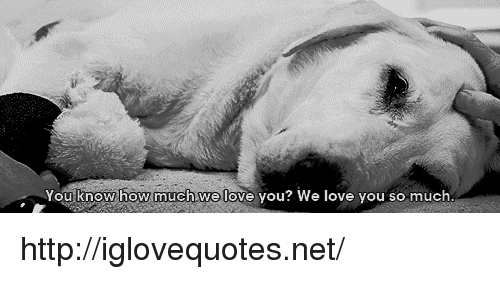 love you so much: ou know how much.we love you? We love you so much http://iglovequotes.net/