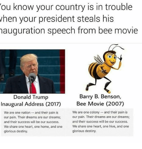Memes, 🤖, and Hive: ou know your country is in trouble  when your president steals his  nauguration speech from bee movie  Barry B. Benson,  Donald Trump  Inaugural Address (2017)  Bee Movie (2007)  We are one colony and their pain is  We are one nation and their pain is  our pain. Their dreams are our dreams;  our pain. Their dreams are our dreams;  and their success will be our success.  and their success will be our success.  We share one heart, one home, and one  We share one heart, one hive, and one  glorious destiny.  glorious destiny.