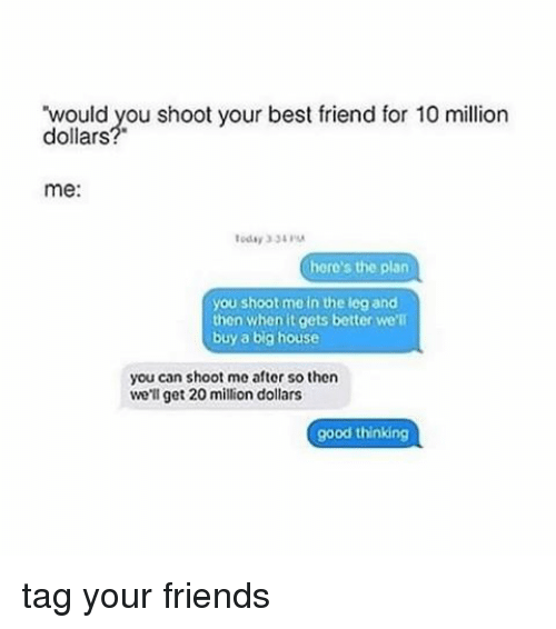 Best Friend, Friends, and Memes: ould you shoot your best friend for 10 million  dollars  me:  here's the plan  you shoot me in the leg and  then when it gets better we'll  buy a big house  you can shoot me after so then  we'll get 20 million dollars  good thinkin tag your friends