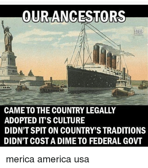 America, Memes, and 🤖: OUR ANCESTORS  STOP  CAME TO THE COUNTRY LEGALLY  ADOPTED IT'S CULTURE  DIDN'T SPIT ON COUNTRY'S TRADITIONS  DIDN'T COST A DIME TO FEDERAL GOVT merica america usa