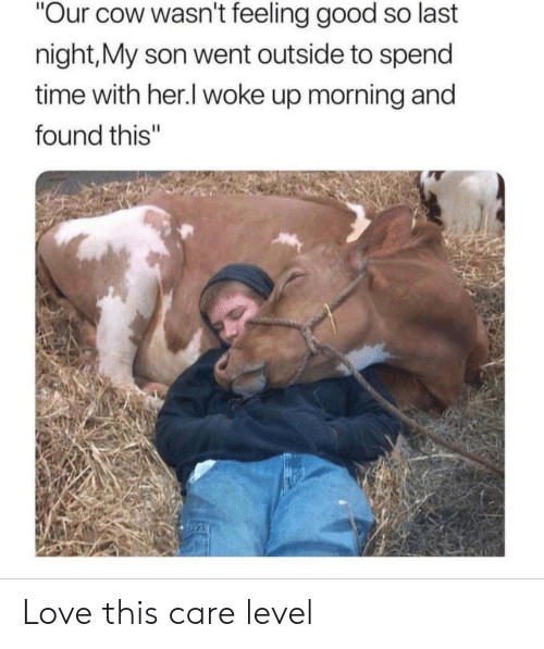 "feeling good: ""Our cow wasn't feeling good so last  night,My son went outside to spend  time with her.I woke up morning and  found this"" Love this care level"