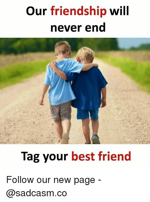 Best Friend, Memes, and Best: Our friendship will  never end  Tag your best friend Follow our new page - @sadcasm.co
