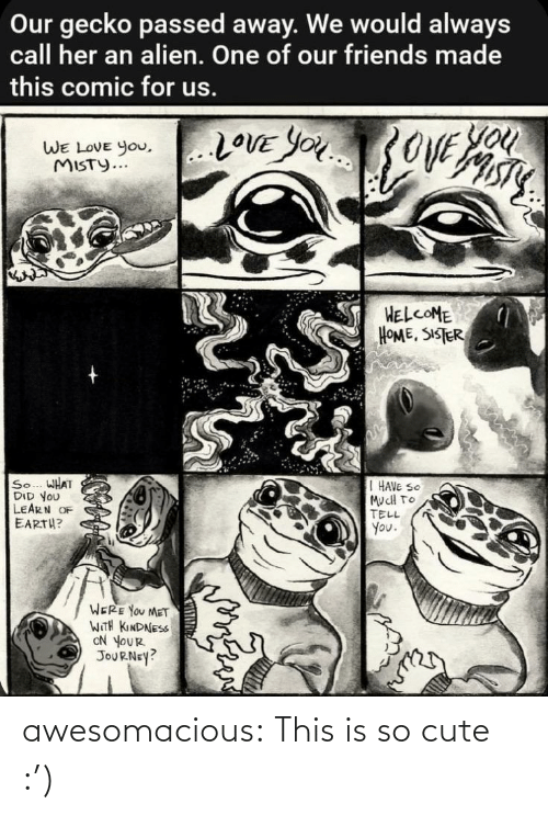 to-tell-you: Our gecko passed away. We would always  call her an alien. One of our friends made  this comic for us.  You  20VE YOU3OVE  WE LOVE you,..LOVE YOu  WE LOVE You,  MISTY...  HELCOME  HOME, SISTER  So... WHAT  DID YOU  LEARN OF  EARTH?  I HAVE SO  MucH TO  TELL  You.  WERE YOU MET  WITH KINDNESS  ON YOUR  JOURNEY? awesomacious:  This is so cute :')