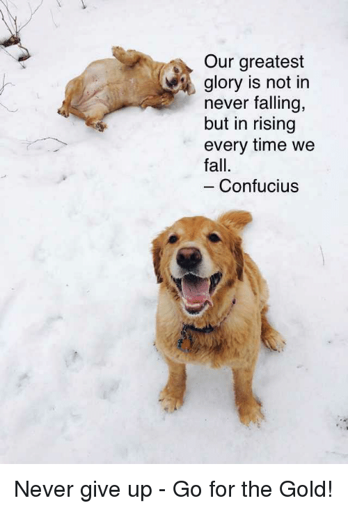 Fall, Time, and Confucius: Our greatest  glory is not in  never falling,  but in rising  every time we  fall.  Confucius <p>Never give up - Go for the Gold!</p>