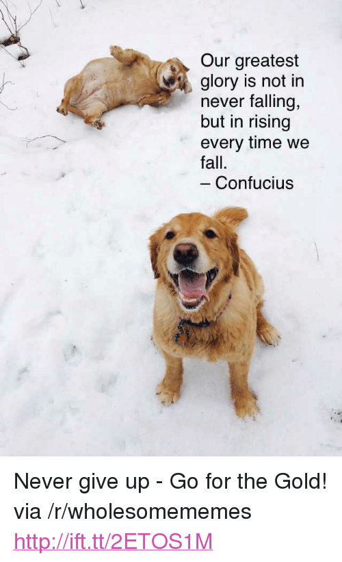"""Fall, Http, and Time: Our greatest  glory is not in  never falling,  but in rising  every time we  fall.  Confucius <p>Never give up - Go for the Gold! via /r/wholesomememes <a href=""""http://ift.tt/2ETOS1M"""">http://ift.tt/2ETOS1M</a></p>"""