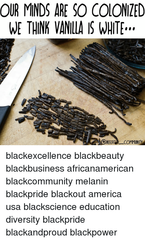 America, Community, and Memes: OUR MINDS ARE SO COIONZED  WE THINK VANILLA IS WHITE..  ONEFERT COMMUNITY blackexcellence blackbeauty blackbusiness africanamerican blackcommunity melanin blackpride blackout america usa blackscience education diversity blackpride blackandproud blackpower