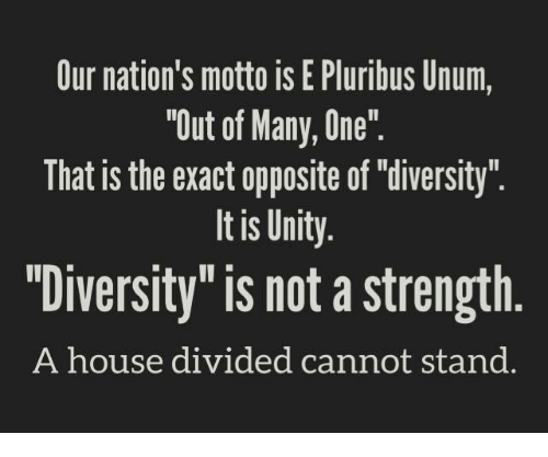 "unity is our nation s strength W hat if diversity isn't our strength ideals such as ""unity,"" is the american enterprise institute and is a senior editor of national review."
