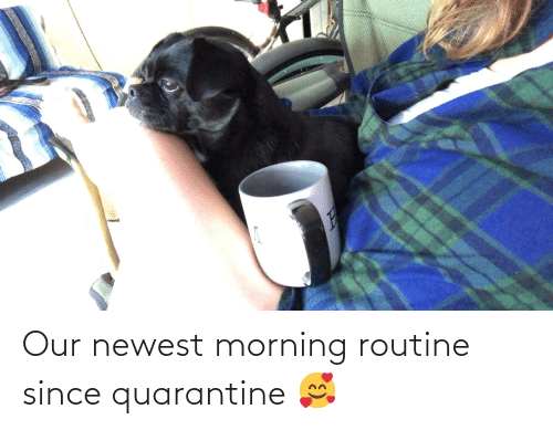 morning routine: Our newest morning routine since quarantine 🥰