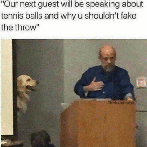 """Guest: Our next guest will be speaking about  tennis balls and why u shouldn't fake  the throw""""  Shitheadsteve"""