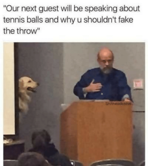 """Guest: """"Our next guest will be speaking about  tennis balls and why u shouldn't fake  the throw""""  Shitheadsteve"""