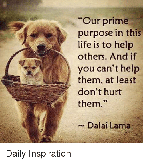 "Memes, Dalai Lama, and 🤖: ""Our prime  purpose in this  life is to help  others. And if  you can't help  them, at least  don't hurt  them.  Dalai Lama Daily Inspiration"