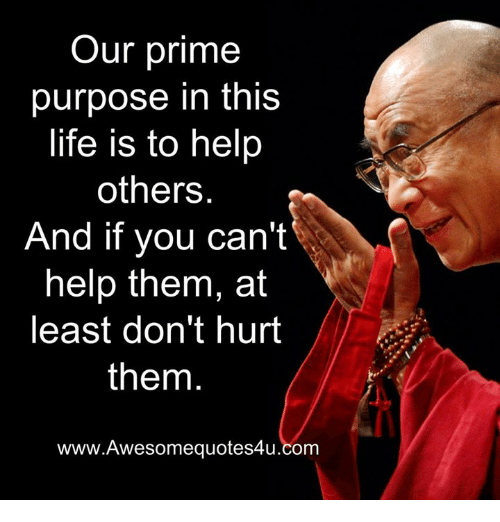 Life, Memes, and Help: Our prime  purpose in this  life is to help  others  And if you can't  help them, at  least don't hurt  them  www.Awesomequotes4u.com