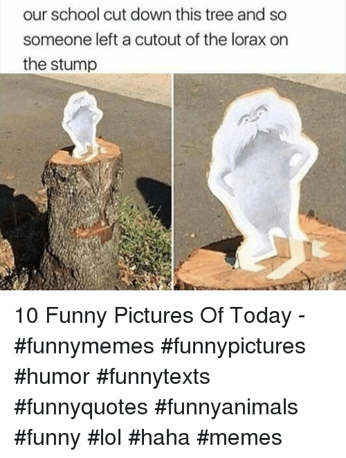 Cutout: our school cut down this tree and so  someone left a cutout of the lorax on  the stump 10 Funny Pictures Of Today - #funnymemes #funnypictures #humor #funnytexts #funnyquotes #funnyanimals #funny #lol #haha #memes