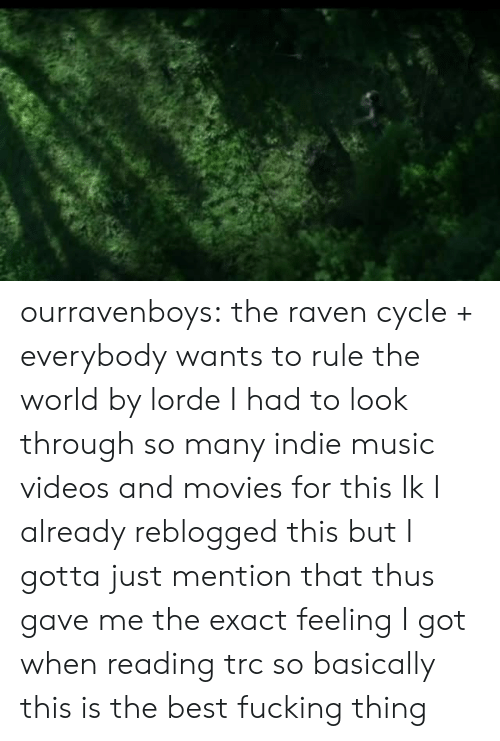 Lorde: ourravenboys:  the raven cycle + everybody wants to rule the world by lorde I had to look through so many indie music videos and movies for this  Ik I already reblogged this but I gotta just mention that thus gave me the exact feeling I got when reading trc so basically this is the best fucking thing