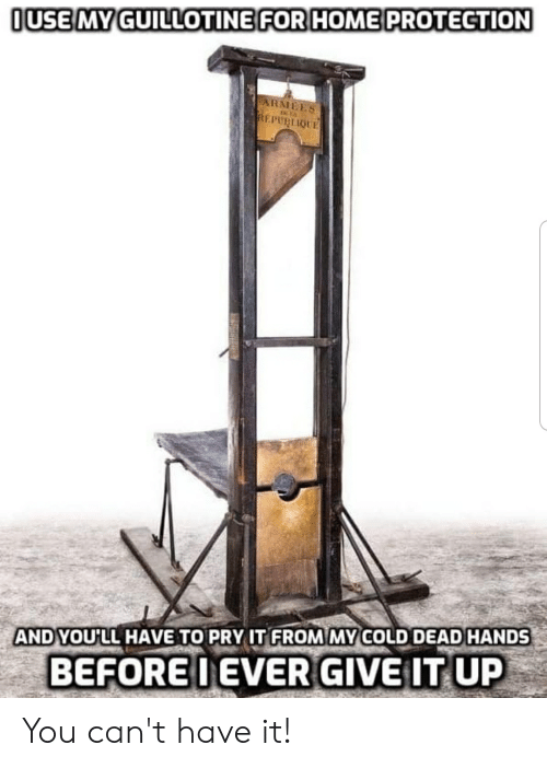 cold-dead-hands: OUSE MY GUILLOTINE FOR HOME PROTECTION  ARMEES  REPUBLIQUE  AND YOU'LL HAVE TO PRY IT FROM MY COLD DEAD HANDS  BEFOREIEVER GIVE IT UP You can't have it!