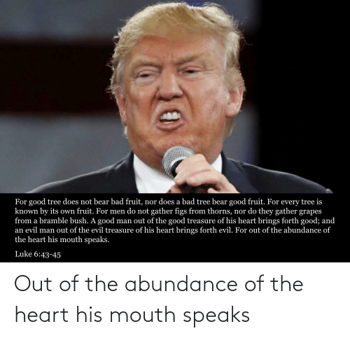 the heart: Out of the abundance of the heart his mouth speaks