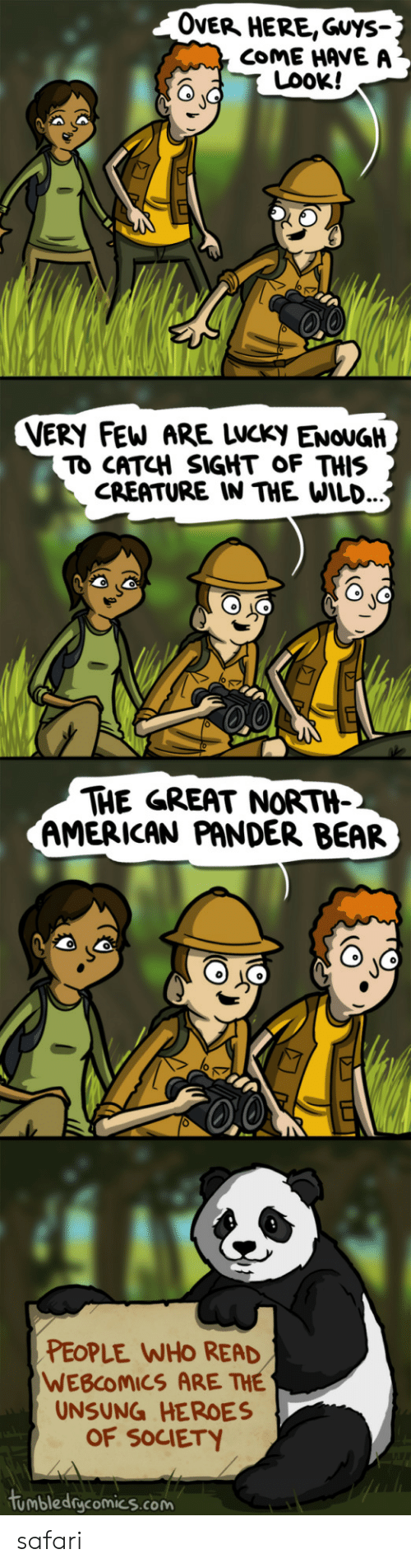 Safari: OveR HERE,Guys-  COME HAVE A  LOOK!  VERY FEW ARE LWCKy ENOUGH  TO CATCH SIGHT OF THIS  CREATURE IN THE WILD.  THE GREAT NORTH-  AMERICAN PANDER BEAR  PEOPLE WHO READ  WEBCOMICS ARE THE  UNSUNG HEROES  OF SOCIETY  tumbledgcomics.com safari
