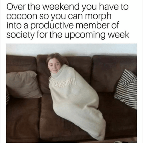 cocoon: Over the weekend you have to  cocoon so you can morph  into a productive member of  society for the upcoming week