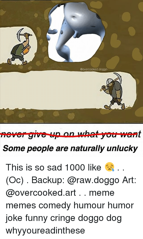 Funny, Meme, and Memes: @overcooked.doggo  Some people are naturally unlucky This is so sad 1000 like 😪 . . (Oc) . Backup: @raw.doggo Art: @overcooked.art . . meme memes comedy humour humor joke funny cringe doggo dog whyyoureadinthese