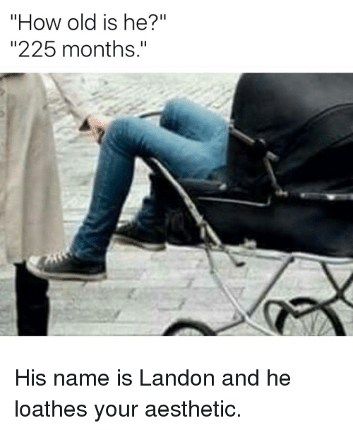 "Aesthet: ow old is he?""  ""225 months."" His name is Landon and he loathes your aesthetic."