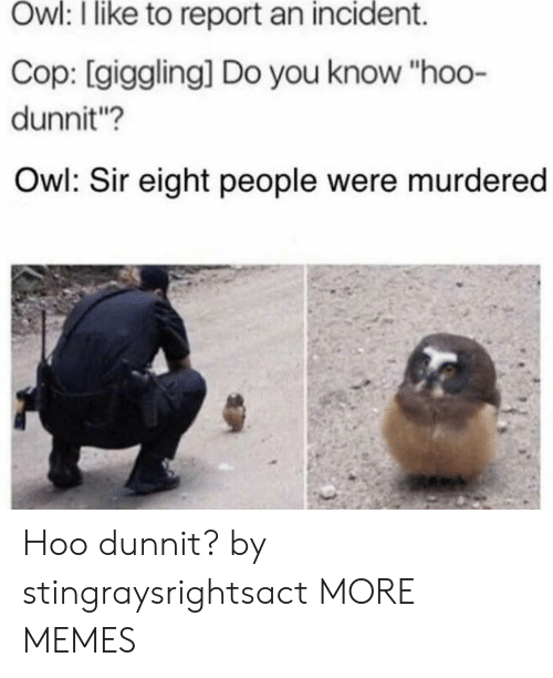 """incident: Owl: I like to report an incident.  Cop: [giggling] Do you know """"hoo-  dunnit?  Owl: Sir eight people were murdered Hoo dunnit? by stingraysrightsact MORE MEMES"""