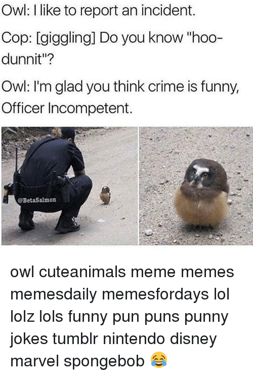 """Punny Jokes Tumblr: Owl: like to report an incident.  Cop: giggling] Do you know """"hoo-  dunnit""""?  Owl: I'm glad you think crime is funny,  Officer Incompetent.  @BetaSalmon owl cuteanimals meme memes memesdaily memesfordays lol lolz lols funny pun puns punny jokes tumblr nintendo disney marvel spongebob 😂"""