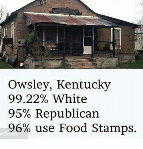 College Student Food Stamps Kentucky