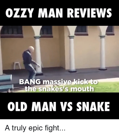 25 Best Memes About Snake Snake Memes : ozzy man reviews bang massive kick to the snakes s 3501329 from onsizzle.com size 500 x 566 png 96kB