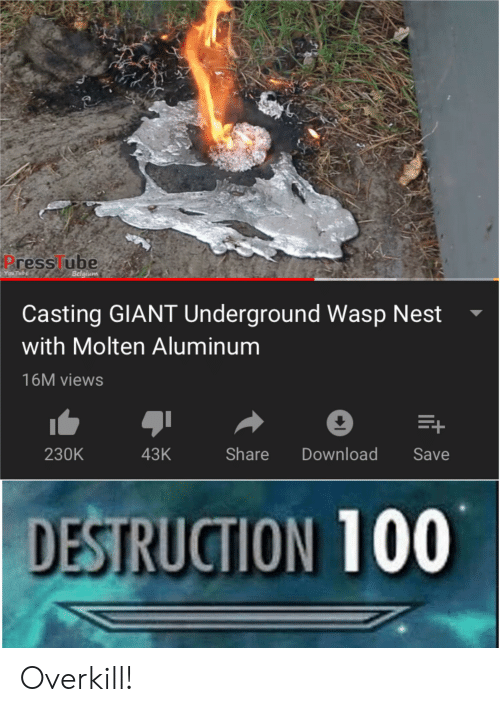 wasp nest: P  Press ube  You Tube  Belgium  Casting GIANT Underground Wasp Nest  with Molten Aluminum  16M views  Download  Share  43K  230K  Save  DESTRUCTION 100 Overkill!