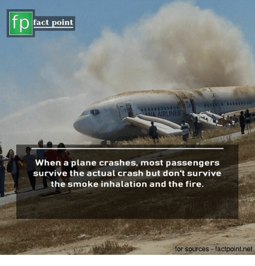 Fire, Memes, and 🤖: pact point  AIRLINES  When a plane crashes, most passengers  survive the actual crash but don't survive  the smoke inhalation and the fire.  for sources factpoint.net